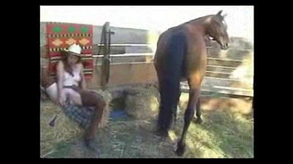 Se masturbando gostoso na frente do cavalo